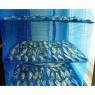 Сушилка-сетка для рыбы подвесная